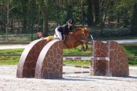 Championnat départemental des Yvelines de saut d'obstacle à Versailles