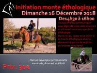 16 Décembre 2018 : Initiation monte éthologique / Monte libre