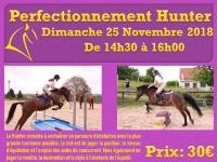 25 Novembre 2018 : Perfectionnement Hunter/ Horse-ball