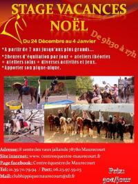 Du 24 Décembre 2018 au 4 Janvier 2019 : Stage Vacances Noël