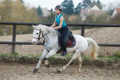 diplôme équitation Maurecourt