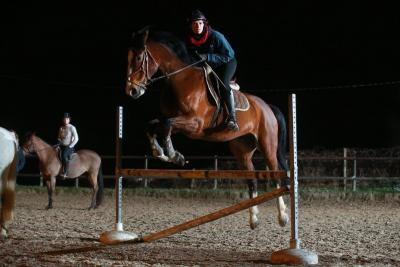 maitrise du cheval  Maurecourt
