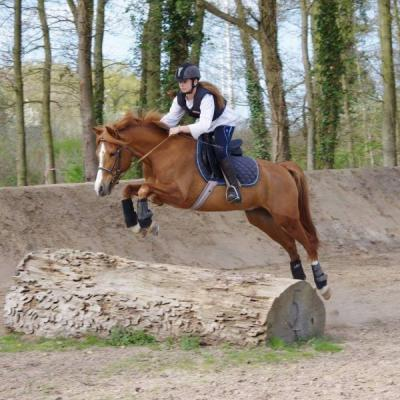 concours cheval  Maurecourt